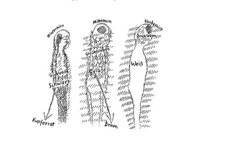 Tafelzeichnung Steiners, GA 349
