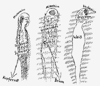 Steiner skizzierte seine Ansichten über Rassen ( GA 349, 1923 )