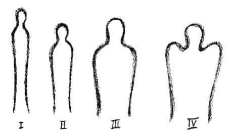 Steiner: Körperformen der vier Temperamente